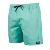 Boardshorty Mystic Brand Swim Boardshort Mist Mint